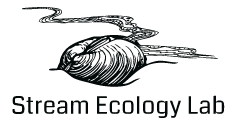 Stream Ecology Lab